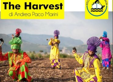 The Harvest: un docu-film