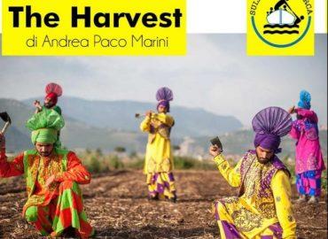 The Harvest: un docu-film